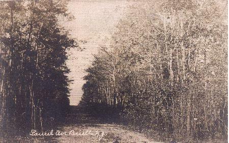 (Circa 1907) Laurel Avenue looking towards Riverview Drive